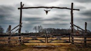 Interesująca brama w texasie