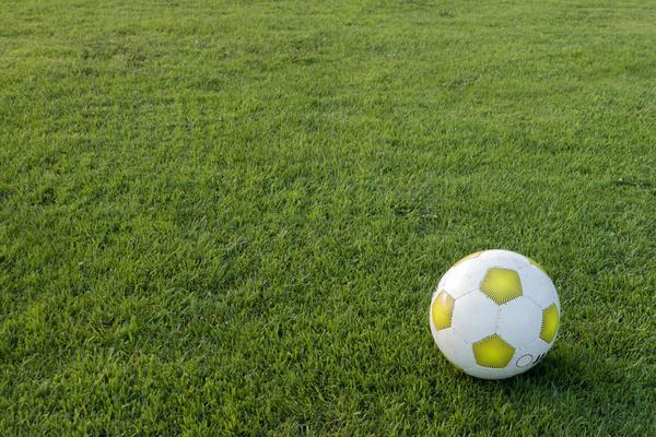 konserwacja boisk szkolnych
