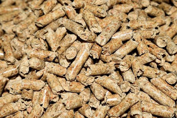 producent pelletu drzewnego