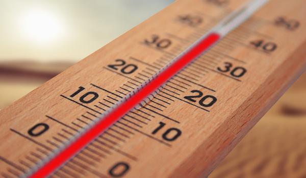 termometry bezprzewodowe